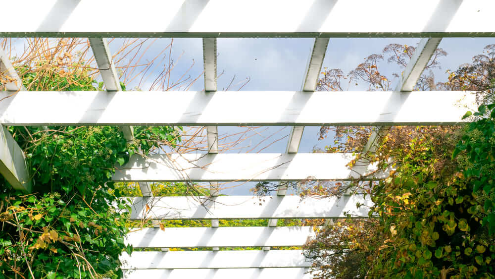 Complete Your Patio Area with a Pergola